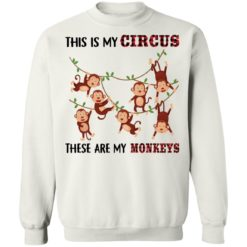 This is my circus these are my monkeys shirt $19.95 redirect05062021050547 9