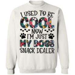 I used to be cool now i'm just my dogs snack dealer shirt $19.95 redirect05102021040558 9